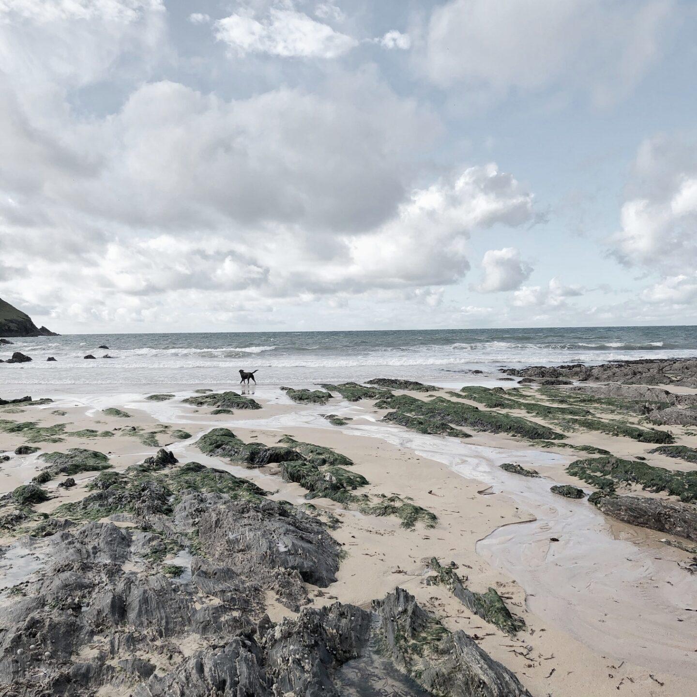 Rocks across a sandy beach in Devon