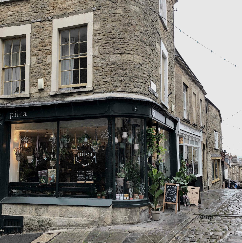 Visit Frome: Pilea shop