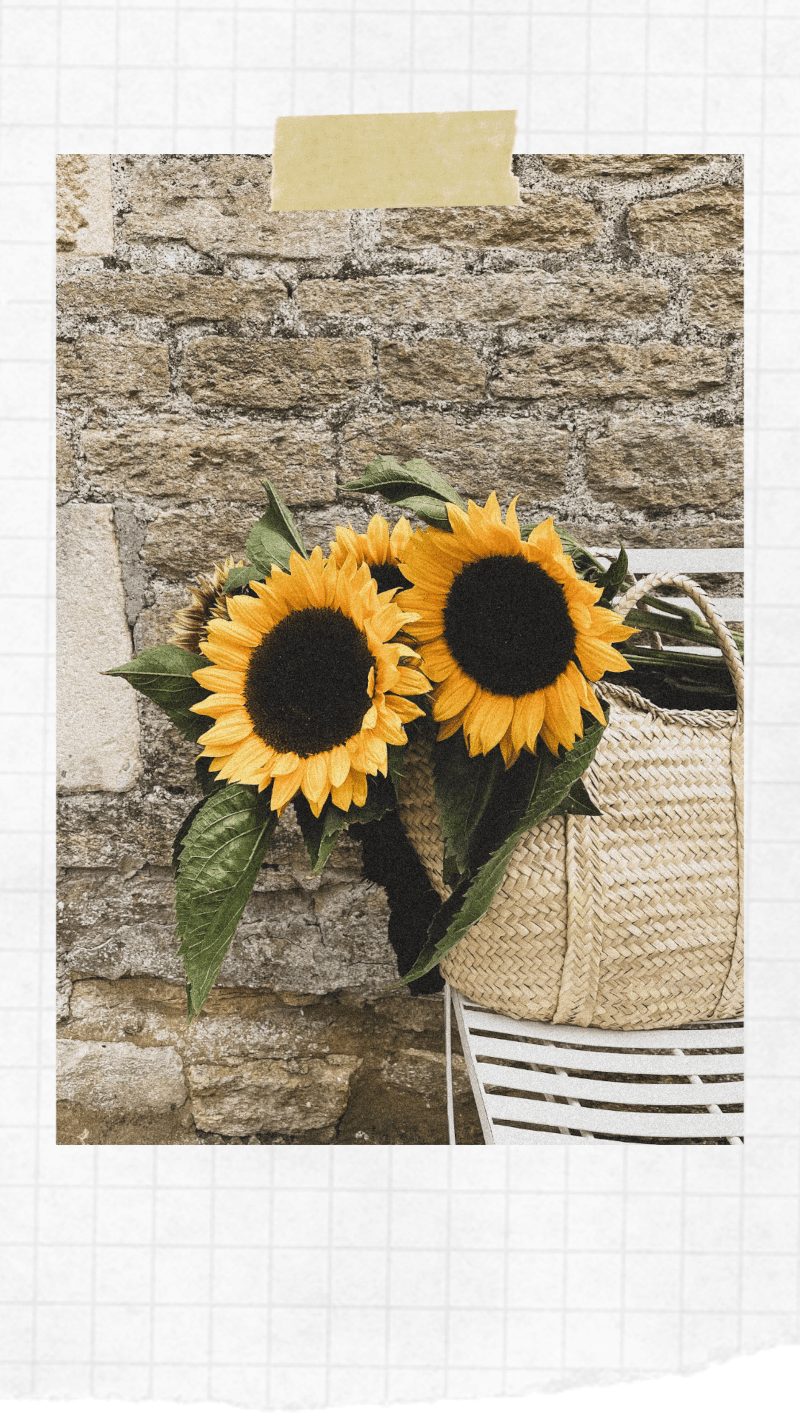 Sunflowers in a basket bag against stone wall